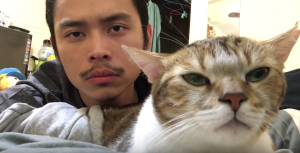 The playlist liked by man and kitties alike.