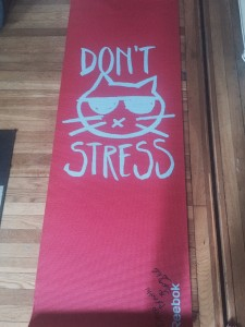 Reebok Yoga Mat Cat